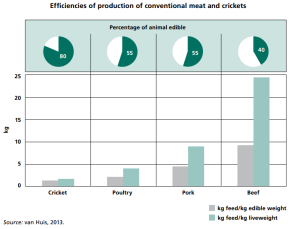 Efficiencies of Production of Conventional Meat and Crickets