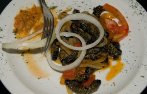 Mopane Worms